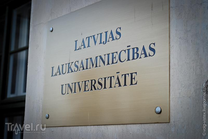 Столица герцогства Курляндского / Латвия