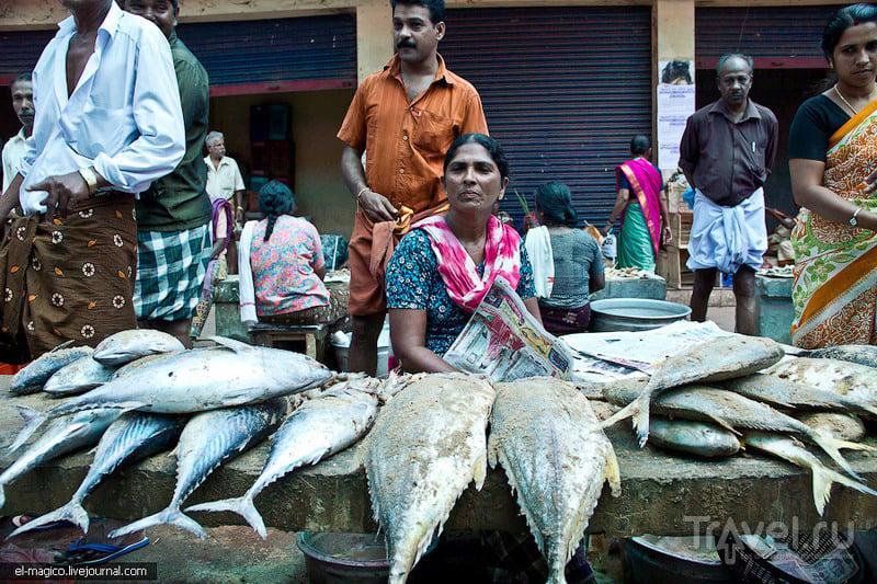 В Варкале, Индия / Фото из Индии