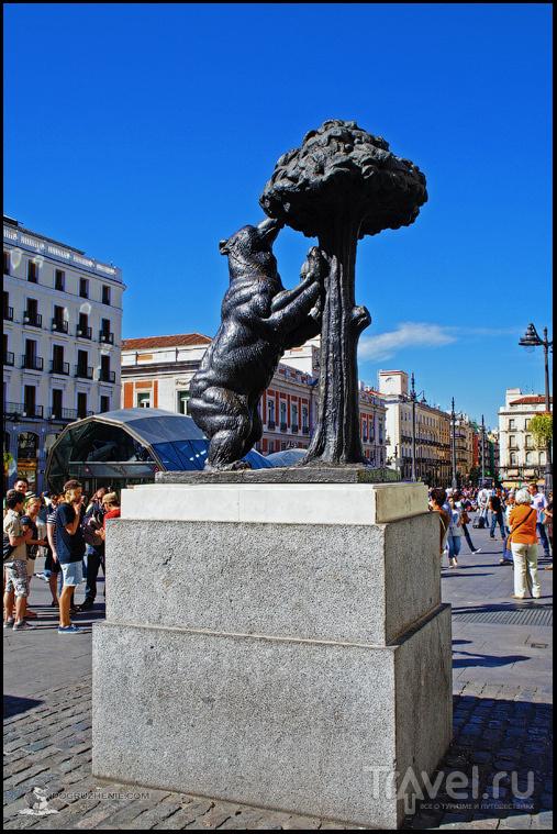 Площадь Пуэрта-дель-Соль (исп. Puerta del Sol) в Мадриде, Испания / Фото из Испании