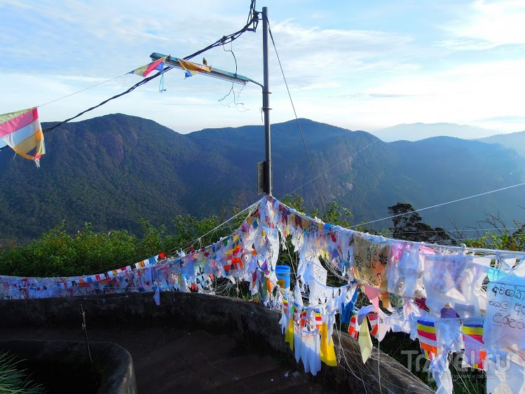Длинный рассказ о поездке на Шри-Ланку / Шри-Ланка