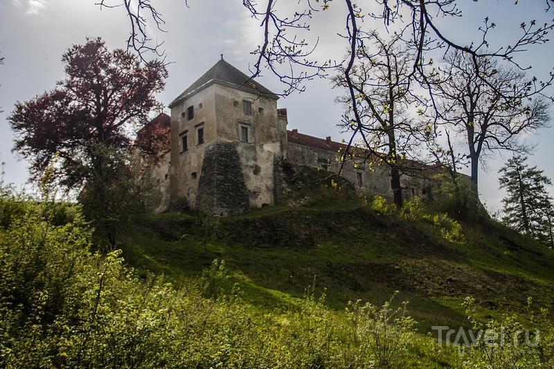 Свиржский замок / Украина