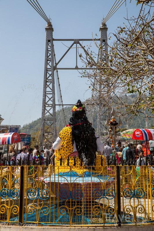 На мосту Лакхман Джула в Ришикеше, Индия / Фото из Индии