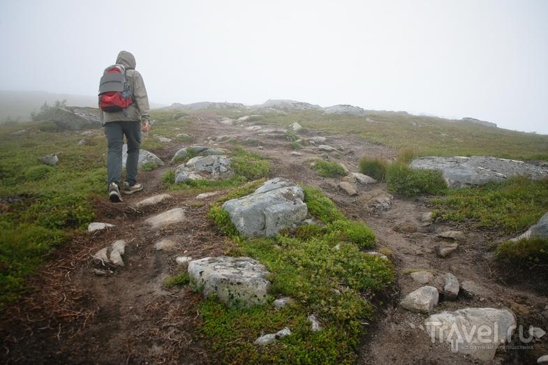 Lofoten Islands / Фото из Норвегии