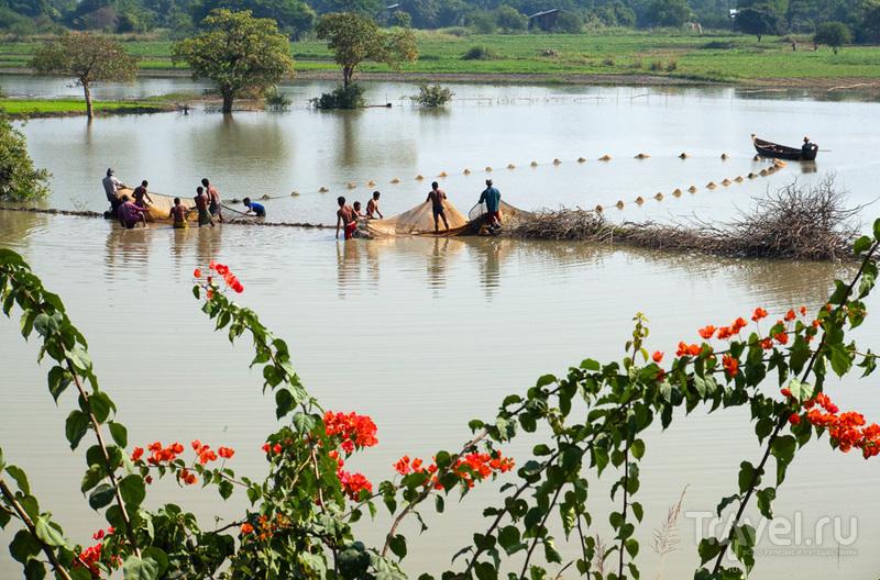 В окрестностях Мандалая, Мьянма / Фото из Мьянмы
