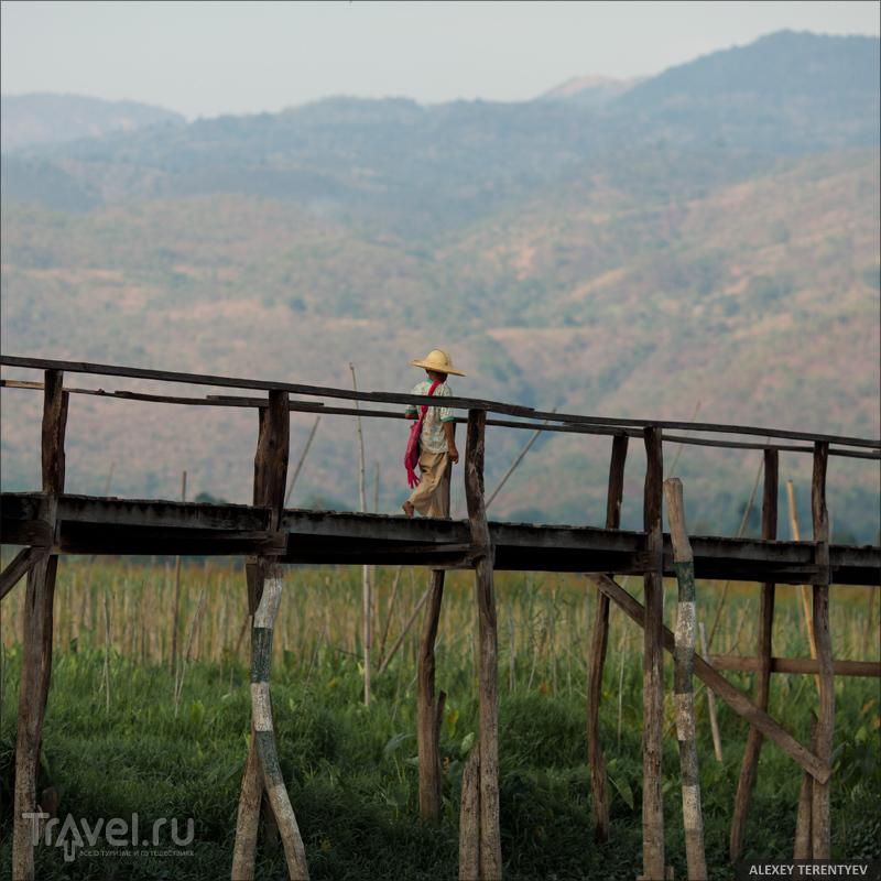 В Мьянме / Фото из Мьянмы