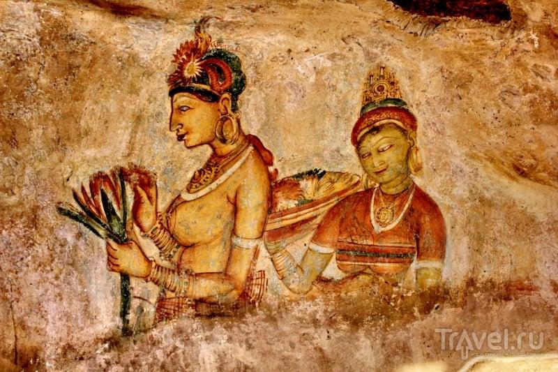 Львиная гора Сигирия. Фрески и зеркальная стена / Шри-Ланка