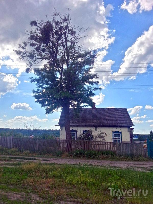 Велорайд из Харькова в Мерефу / Украина