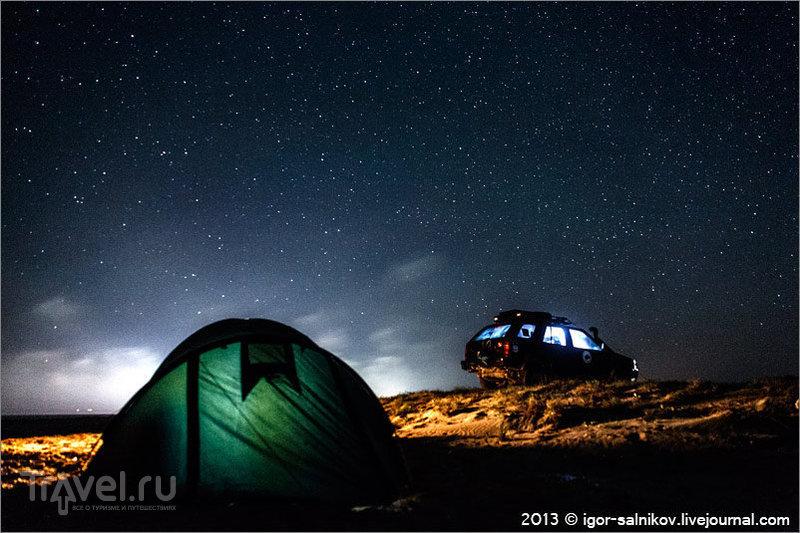 На берегу озера Донузлав, Украина / Фото с Украины