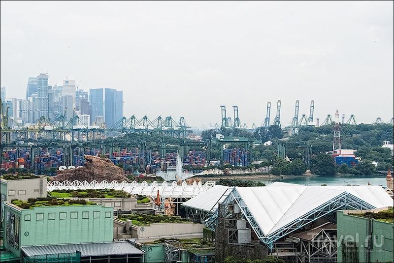 Прогулки по Сингапуру: остров Сентоза / Фото из Сингапура