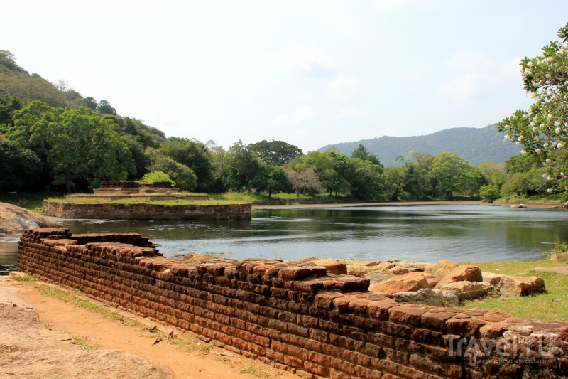 Шри-Ланка: Kalu Diya Pokuna / Фото со Шри-Ланки