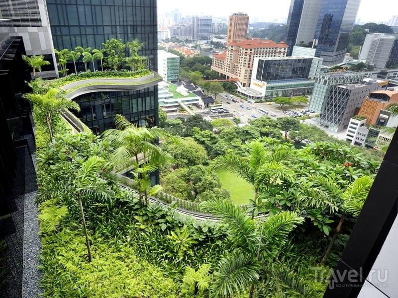 Отель-сад Parkroyal on Pickering в Сингапуре / Сингапур