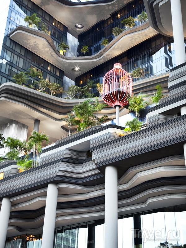 Лианы, пальмы и бутоны словно обрамляют вид на Сингапур / Сингапур
