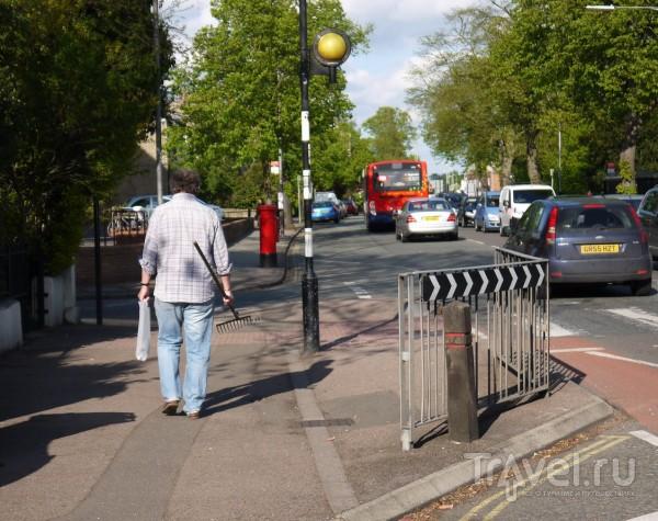 Солнечный Кембридж / Фото из Великобритании