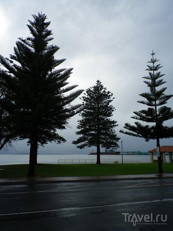 Порт Линкольн - Штат Южная Австралия / Австралия