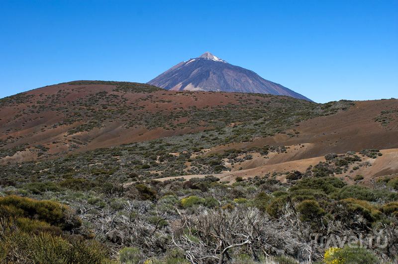 Вулкан Тейде на острове Тенерифе, Испания / Фото из Испании