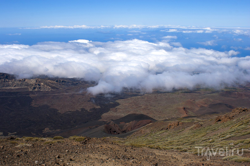 Где-то посреди океана - остров Тенерифе / Фото из Испании
