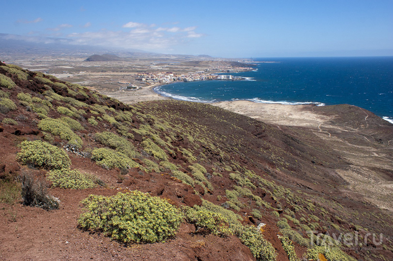 Пляж в городе Эль-Медано на острове Тенерифе, Испания / Фото из Испании