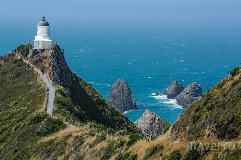 Маяк Nugget Point / Фото из Новой Зеландии