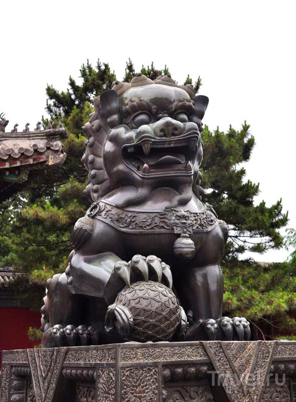 Страж летнего сада в императорском дворцово-парковом комплексе, Пекин, Китай / Фото из Китая