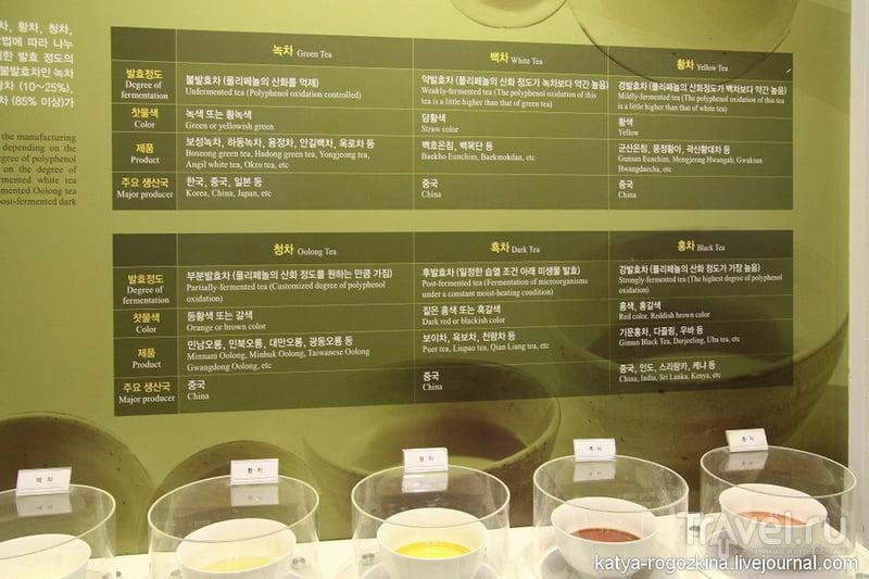Южная Корея. Чайные плантации Посон / Южная Корея