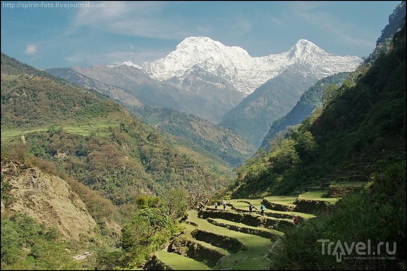 Базовый лагерь Аннапурны и Пунхилл, март 2013 / Фото из Непала