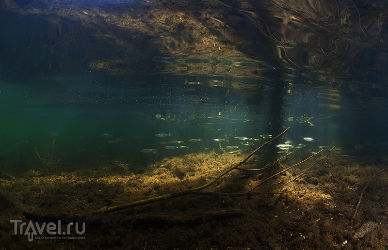 Ныряем в средней полосе России / Фото из России