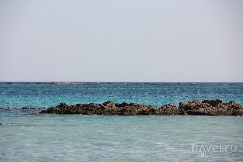 Розовые пески Элафониси / Фото из Греции