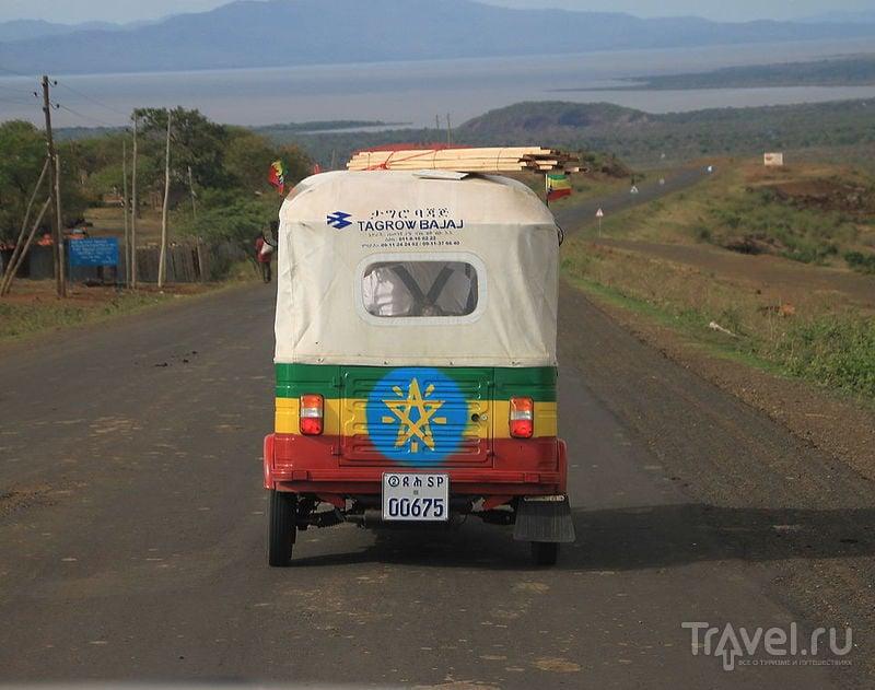 Национальный парк Нечисар / Фото из Эфиопии