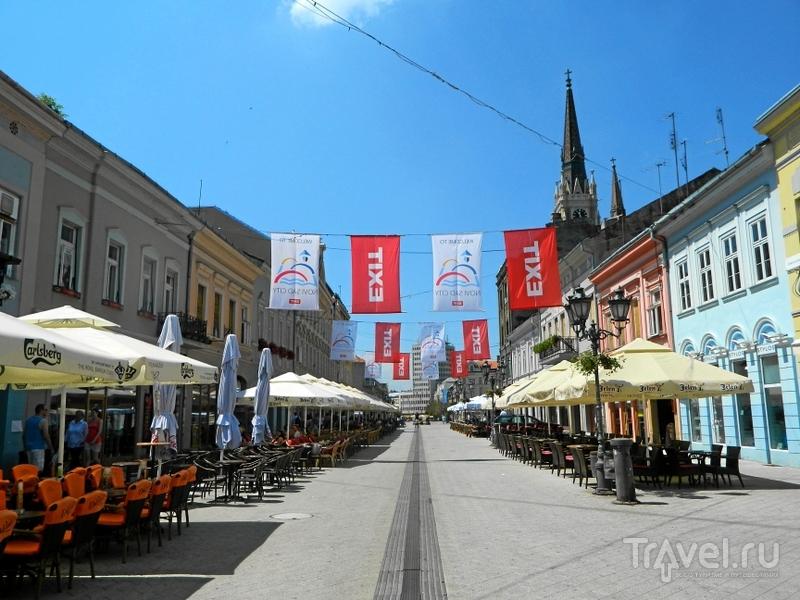 Улица Змай Йовина в Нови-Саде, Сербия / Фото из Сербии