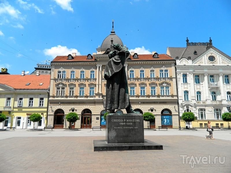 Памятник Светозару Милетичу в Нови-Саде, Сербия / Фото из Сербии