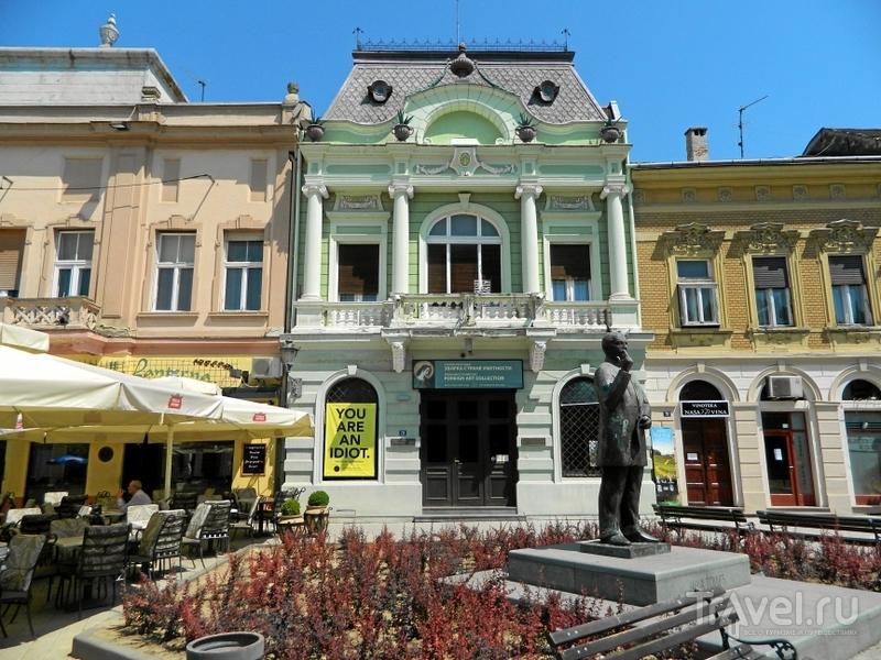Памятник Яше Томичу в Нови-Саде, Сербия / Фото из Сербии
