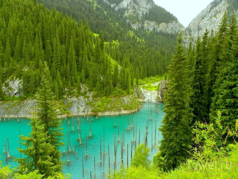 Озеро Каинды было образовано в 1911 году после сильнейшего землетрясения, Казахстан / Казахстан
