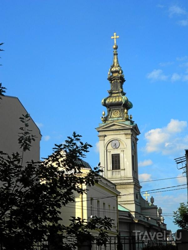 Кафедральный собор Сербской Православной Церкви в Белграде, Сербия / Фото из Сербии