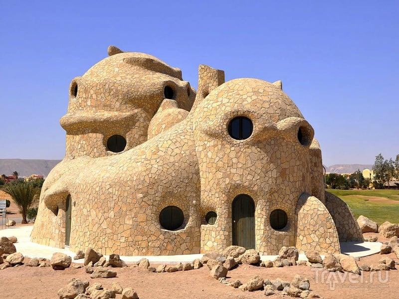 Turtle House принимает постояльцев с октября по апрель / Египет