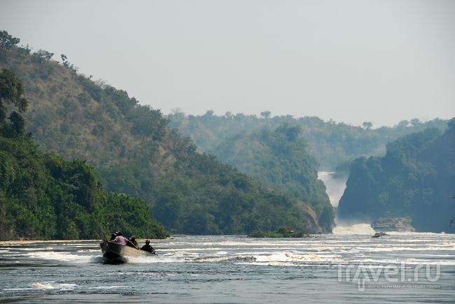 """В национальном парке """"Мёрчисон Фолс"""", Уганда / Фото из Уганды"""
