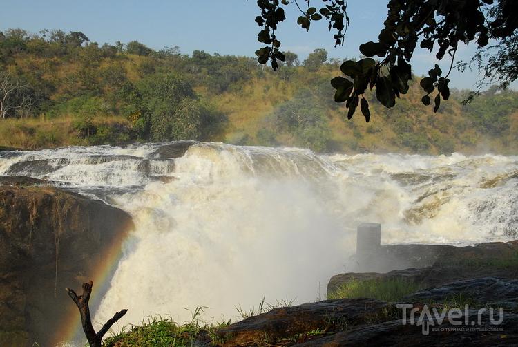 Водопад Мёрчисона Уганда / Фото из Уганды