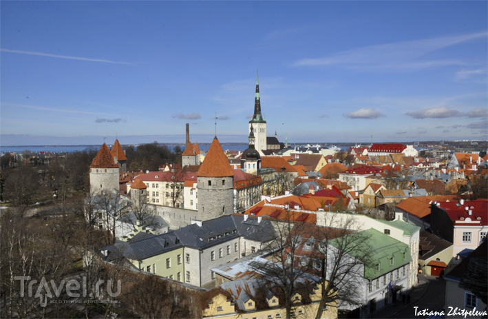 В Таллине, Эстония / Фото из Эстонии
