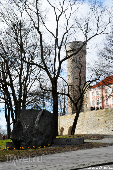 Башня Pikk Hermann (Длинный Герман) в Таллине, Эстония / Фото из Эстонии