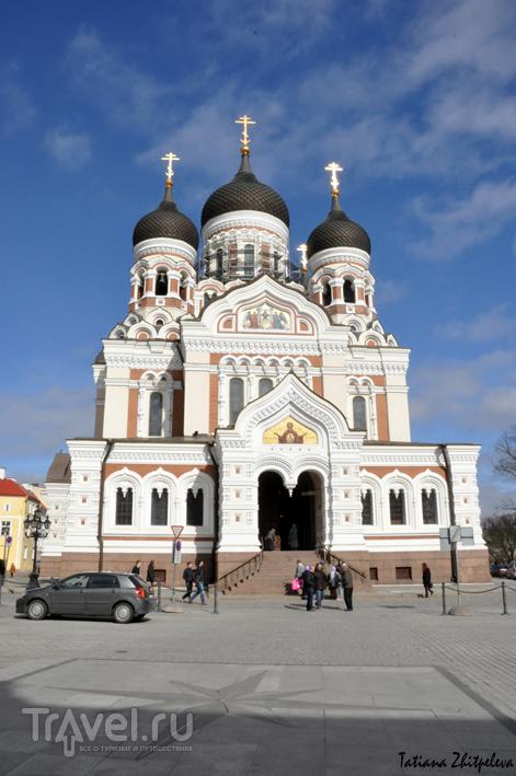 Александро-Невский собор в Таллине, Эстония / Фото из Эстонии
