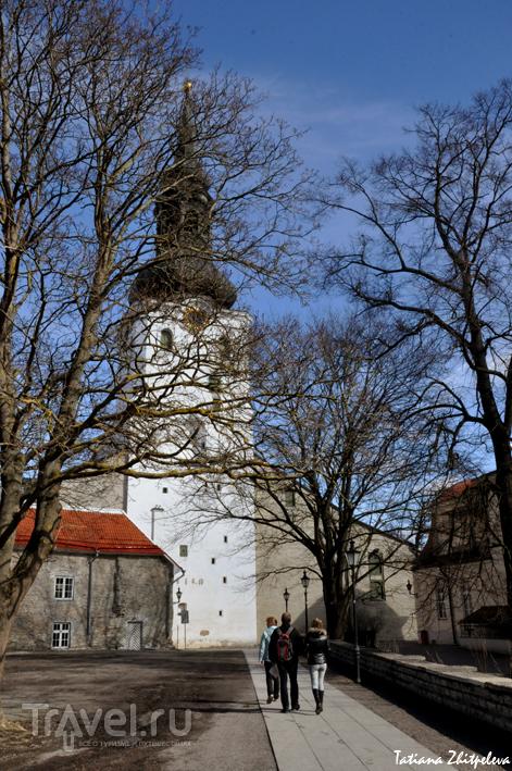 Кафедральный собор Святой Девы Марии в Таллине, Эстония / Фото из Эстонии