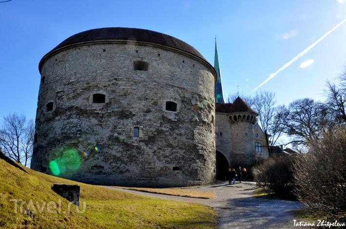 Башня Толстая Маргарита и Морские ворота в Таллине, Эстония / Фото из Эстонии