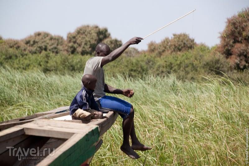 На озере Чад, Чад / Фото из Чада