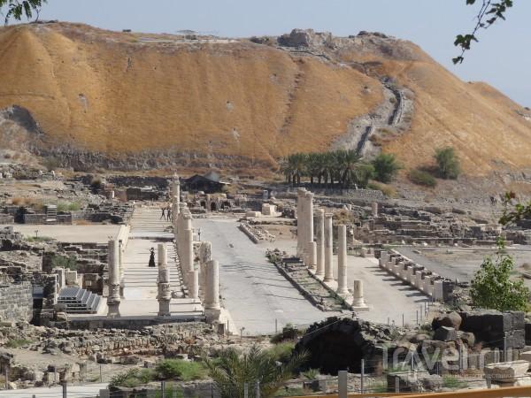 Израиль: вино, раскопки и родники / Израиль