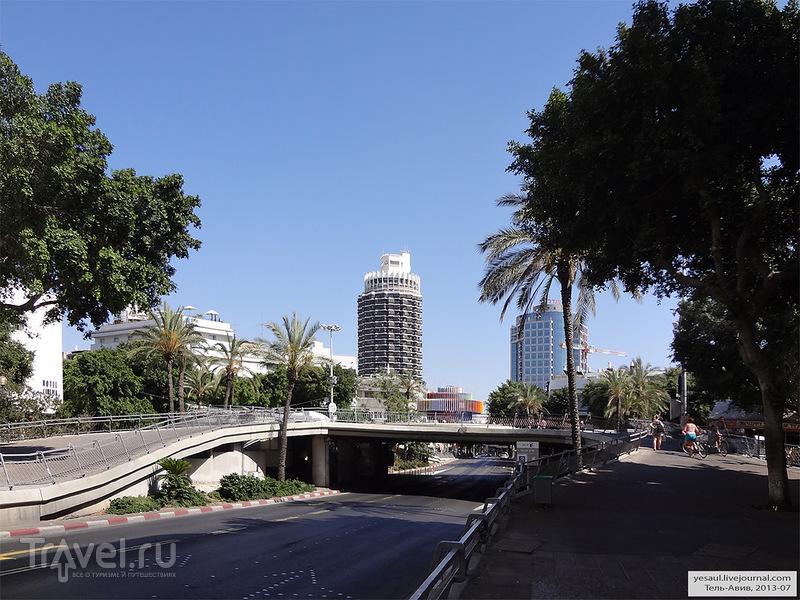 Улица Дизенгоффа в Тель-Авиве, Израиль / Фото из Израиля