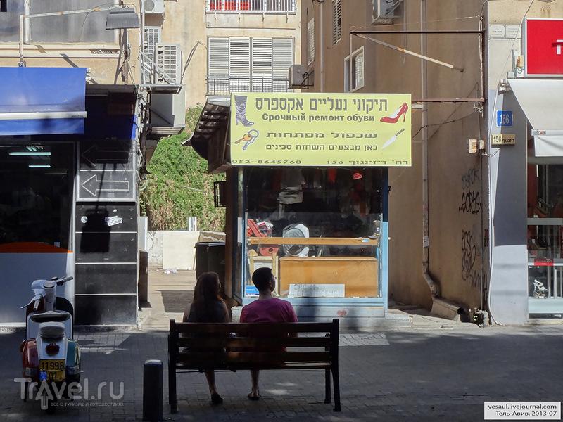 Израиль! Ты мне строишь храмы, и храмы золотом блестят / Фото из Израиля