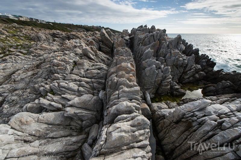Побережье ЮАР. Grootbos Private Nature Reserve / ЮАР