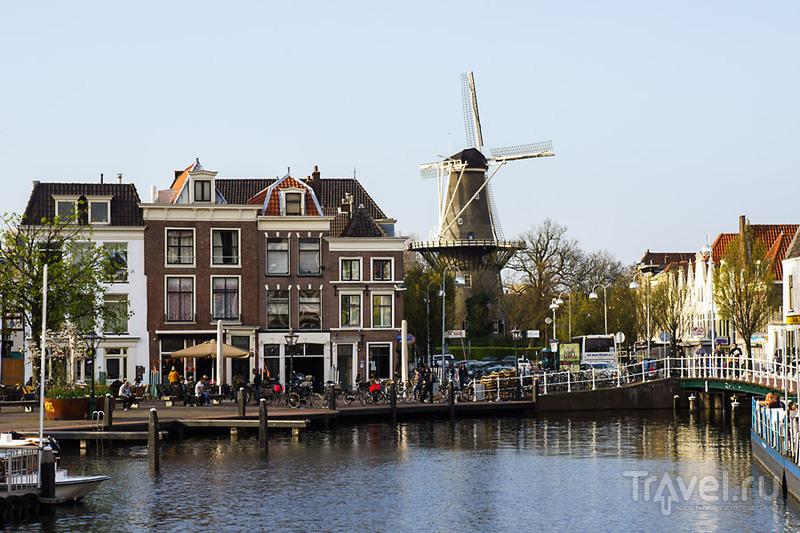 В городе Лейден, Нидерланды / Фото из Нидерландов