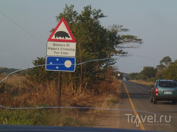 Город бегемотов в ЮАР / ЮАР