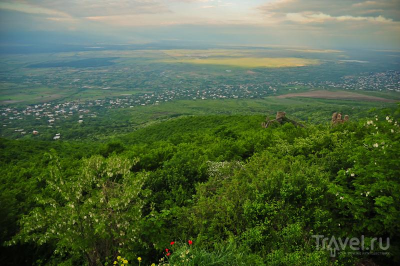 Алазанская долина, Грузия / Фото из Грузии