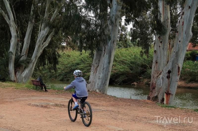 Тель-Авив - парк отдыха х-Яркон / Израиль